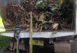 Garden & Green Waste Removal
